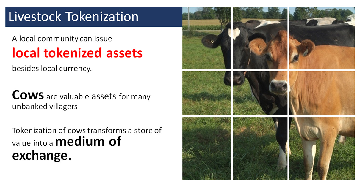 Cow-Token-A-Local-Blockchain-Use-Case-blog